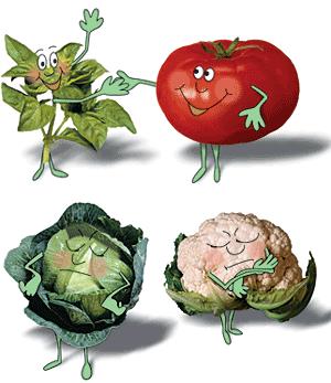 Companion Plants for a naturally healthier vegetable garden