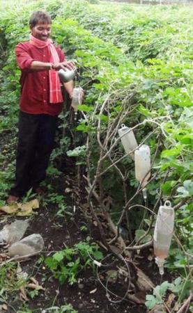 Drip irrigation in fields using plastic bottles