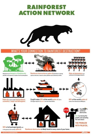 Rainforest Action Network @RAN protects forests, communities & climate ..