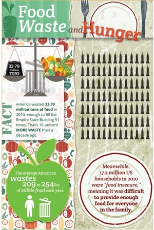Americans go hungry in a land of massive food waste [Infographic]