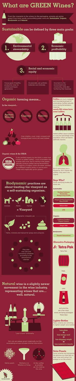 What is a green wine? Infographic