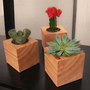 Three succulent garden planters in reclaimed wood by - Macetas de madera ...
