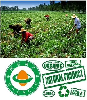 Organic from China hurts U.S. and Canadian organic farmers