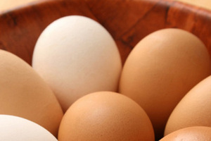 Organic Eggs - What the labels mean when buying 'green' eggs via @Care2