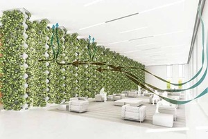 Air purification system based on hydroponic plants.