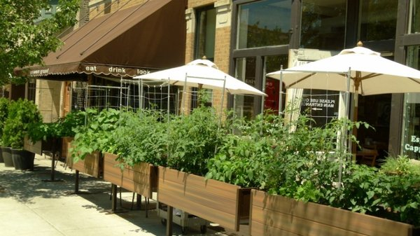 10 Sustainable Restaurants in the US