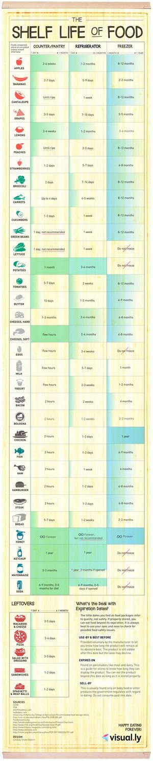 Shelf Life of Food via Visual.ly