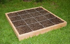 looking to start a home garden - some good tips here