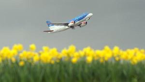 Plant-powered planes show promise via BBC.com