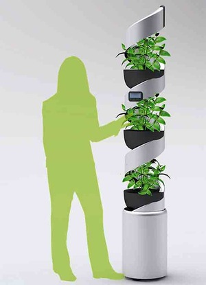 New Twist on Home Hydroponic Gardening | Urban Gardens