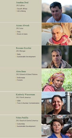 Goldman Prize Winners 2013 - tackling some of the most pressing environmental issues