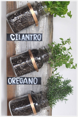 Transformed : Mason Jar Herb Garden