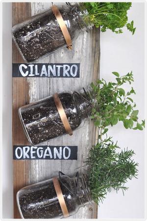Transformed : Mason Jar Herb Garden