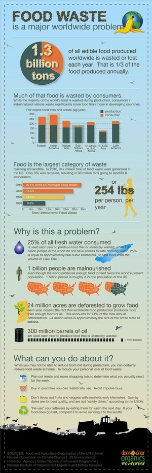 What Food Waste Is Costing You and the Environment