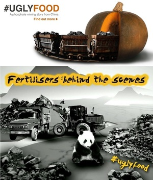 UglyFood: the other truth about chemical fertilisers in China via @Greenpeace