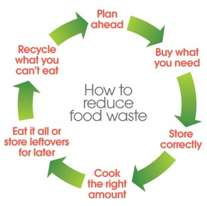 Food waste recycling: what to do with the food you can't eat