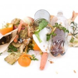The Environmental Action Everyone Overlooks: Five Easy Ways to Reduce Food Waste via Ecocentric