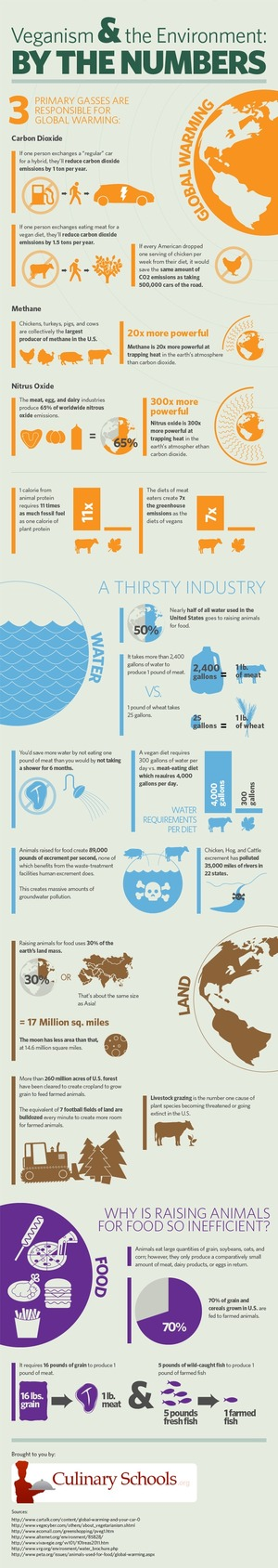 Veganism & the Environment By the Numbers [Infographic]