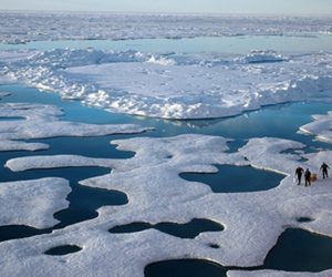 Arctic will be basically ice-free by summer 2050, NOAA study says via @verge