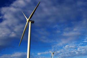 China pushes forward on renewable energy: report