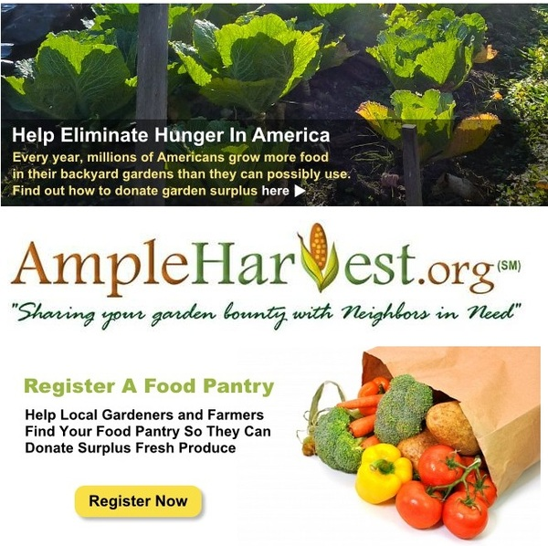 @AmpleHarvest eliminating hunger in community using backyard gardens