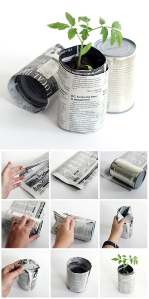 How to Make Newspaper Seedling Pots - Dabbles & Babbles