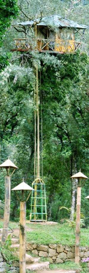 Eco-tourism in Kerala, India - Amazing Treehouses
