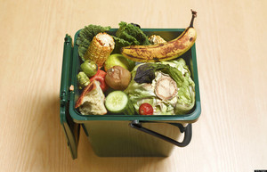 Don't Judge a Fruit by Its Color: Produce Standards and Food Waste in America