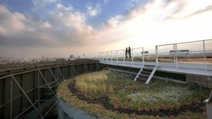 Disused helipad transformed into Foro Ciel rooftop garden and office