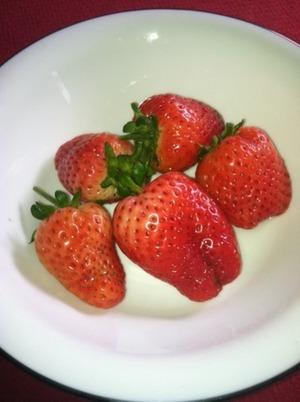 Home grown organic strawberries!