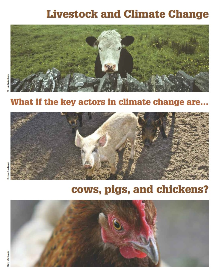 Livestock and Climate Change - A report via WorldWatch