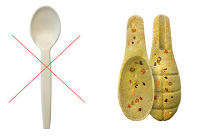 The Edible Spoon