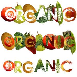 17 Essential Reasons to Eat Organic Food via Organic News