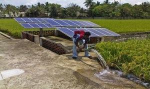 Paul Polak & Team Crowdfund To Bring Solar Pumps to Low-Income Farmers via ecopreneurist