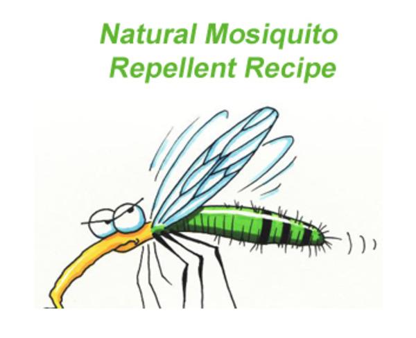 Natural Mosquito Repellent Recipe via Easy Homesteading