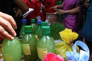 Panchagavya , Organic Plant Promoter