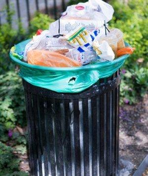 4 ways to Reduce Food Waste via realsimple