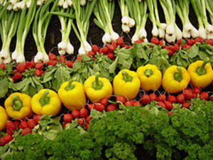 Most people have no idea how their food is grown, much less who grows it! | The Organic View