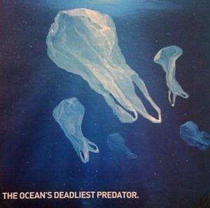 Plastic: The Ocean's Deadliest Predator - We Hate To Waste