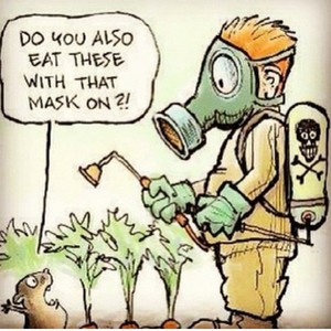 Do you also eat these with that mask on? Scary!  #healthychoices #healthylifestyle  #pesticides