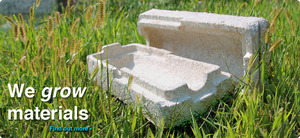 Growing the replacement of styrofoam packaging