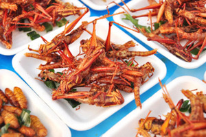 Bug It Up! 6 Reasons Why We Should Eat More Insects