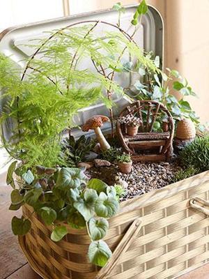Create a Magical Miniature Garden via midwestliving