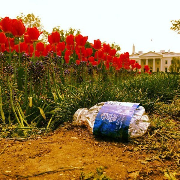 Litterati Is Eradicating The World Of Trash Through Instagram