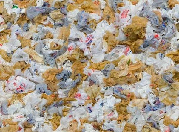California Senate trashes plastic bag ban