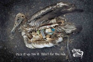 End Plastic Pollution: Pick it Up. Bin it. Take Three for the Sea