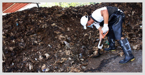 Composting 101-  How to create your own compost in 7 steps