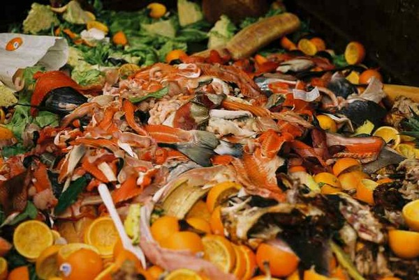 21 Inspiring Initiatives Working to Reduce Food Waste Around the World via @Food_Tank