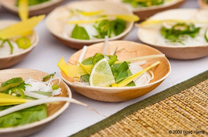 Plant based biodegradable plates and cutlery for #green parties