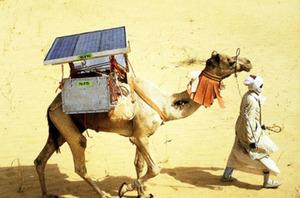 Kenya: Solar Camel Clinics Deliver Life-Saving Meds via earthtechling